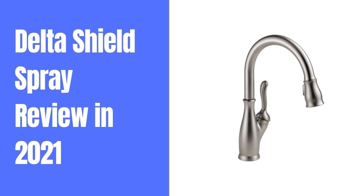 Delta Shield Spray Review [Buying Guide 2021]
